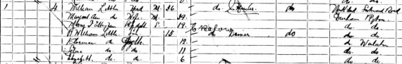 1901 William Little census
