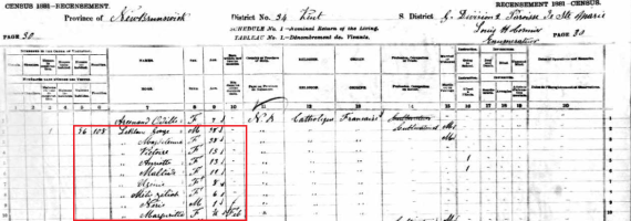 1881 census george
