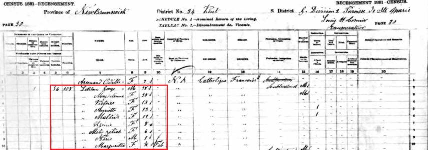 1881 census george